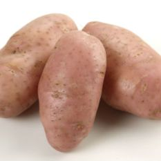 batata-asterix