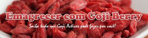 emagrecer-com-goji-berry