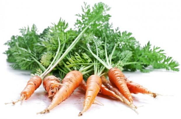 Folhas de cenoura – Uma maravilha esquecida pelos tempos modernos